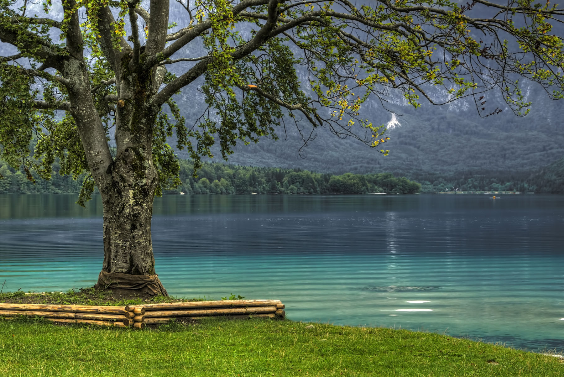Another beautiful view on Lake Bohinj in Slovenia