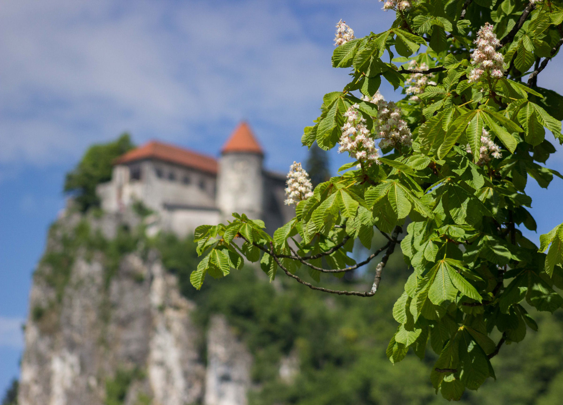 The oldest castle in Slovenia stands on a sheer cliff above Lake Bled