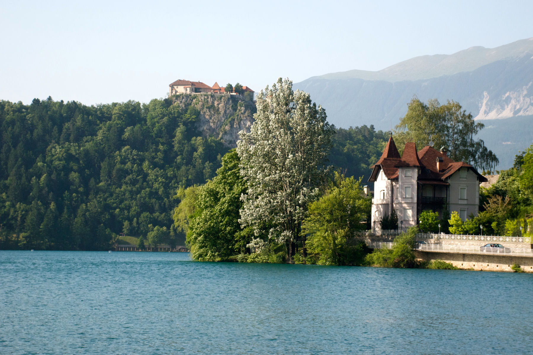 The Bled castle on top of a cliff above the lake
