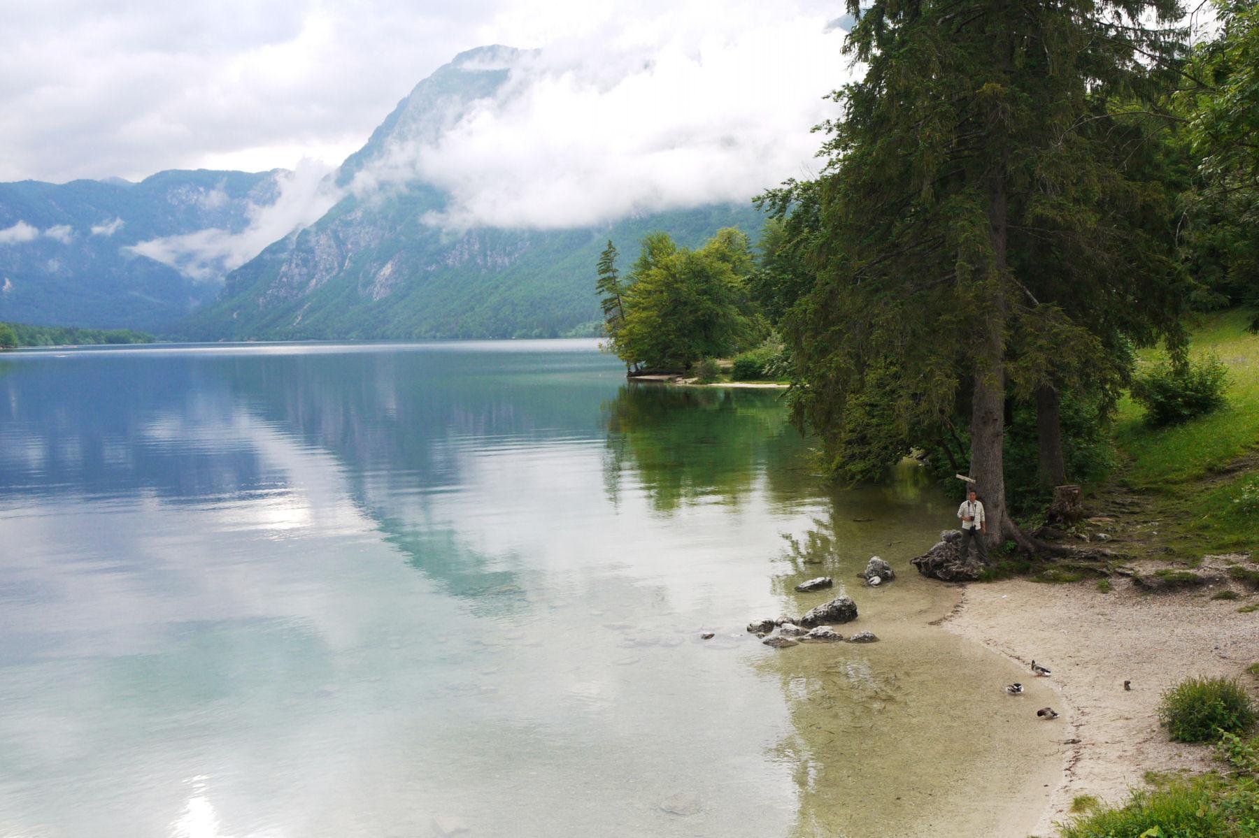 Pristine and calm Lake Bohinj