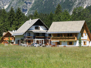 Apartments Alpik at Lake Bohinj Bohinj Slovenia