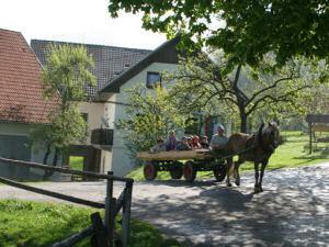 Tourist Farm Ljubica Gorenja Dobrava Slovenia
