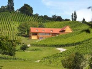 Wine & Tourisam Valdhuber Apartments Zgornja Kungota Slovenia