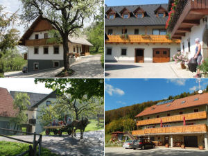 Lake Bled farm stays