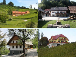Collage of Slovenia farm stays