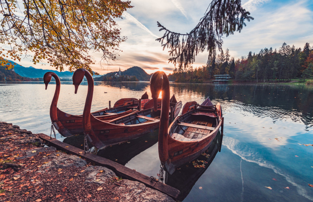 Ornate carved wooden swan boats in the morning sun at Lake Bled, Slovenia