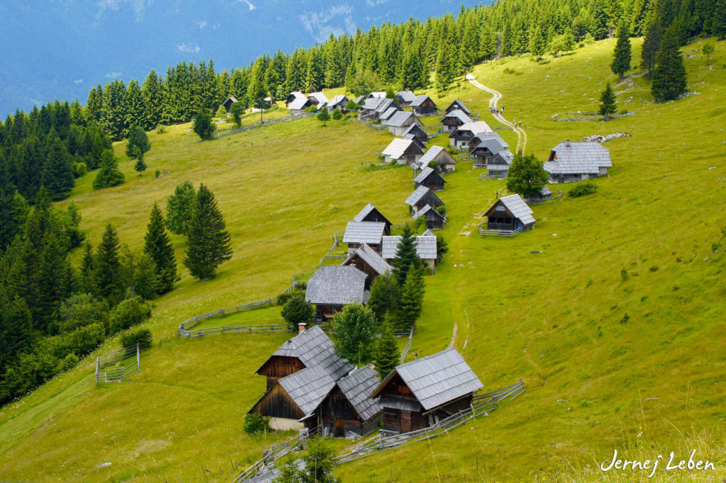 Zajamniki alpine pasture with well preserved shepherds huts on the Pokljuka plateau in Slovenia