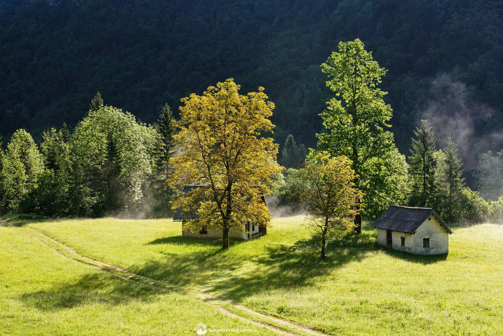 The mist gently rising behind the cottages in the idyllic valley of Voje near Lake Bohinj
