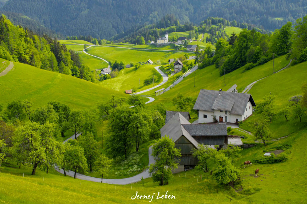 Slovenian countryside looks so picture postcard perfect