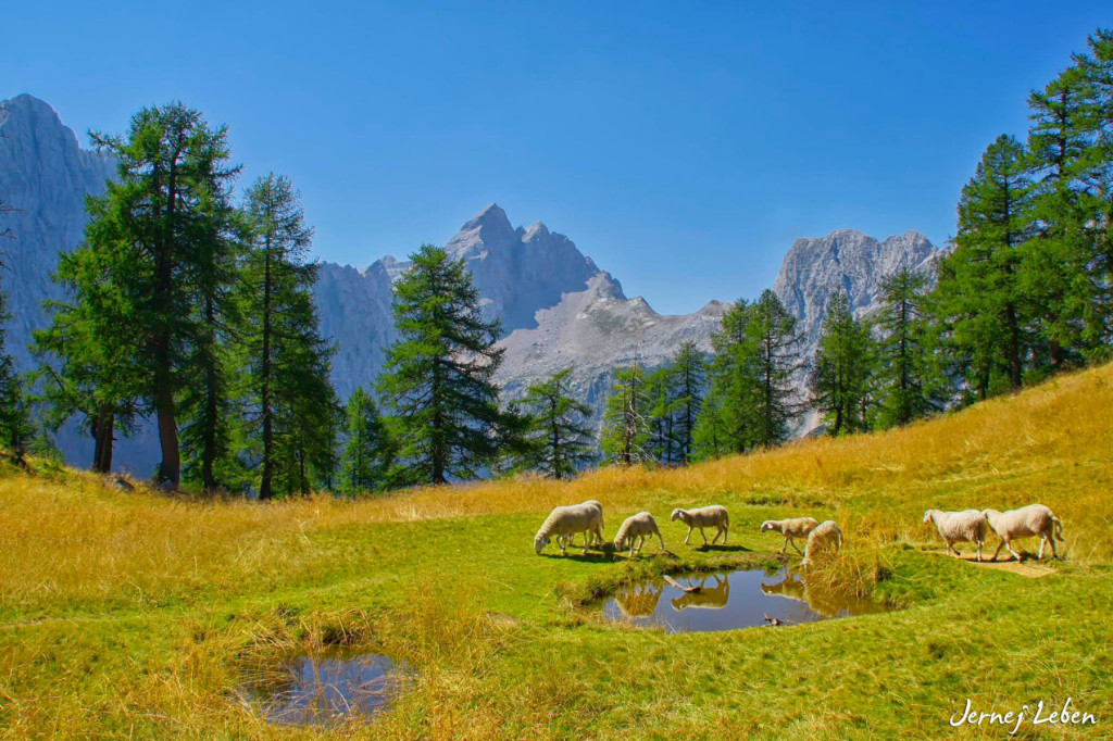 Triglav National Park covers almost 4 percent of the entire Slovenia
