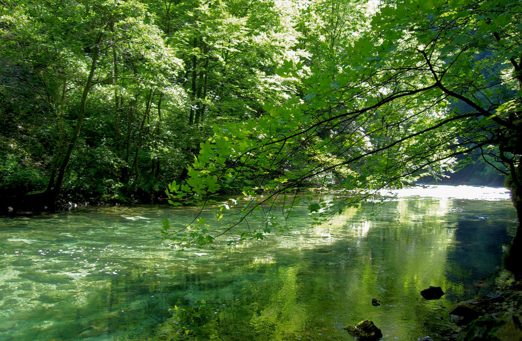 Vintgar gorge is one of the most beautiful places in Slovenia