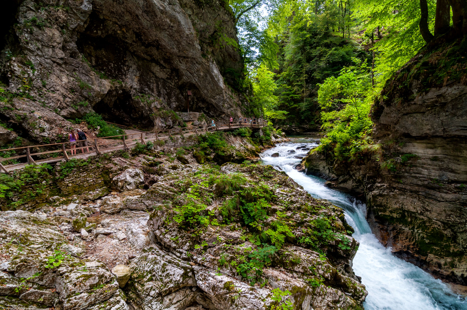 Beautiful views of the cascading water along with rock formations in Vintgar Gorge, Slovenia