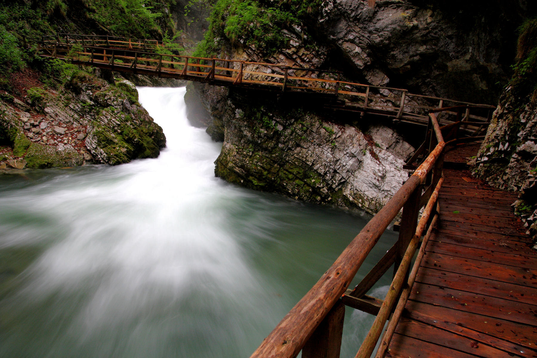The walk along the Vintgar gorge is about 1600 meters long
