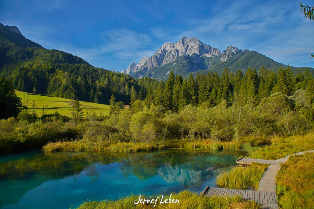 Zelenci Nature Reserve in Slovenia