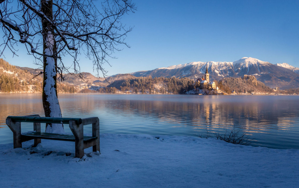 A lakeside bench with a view of Bled Island in winter