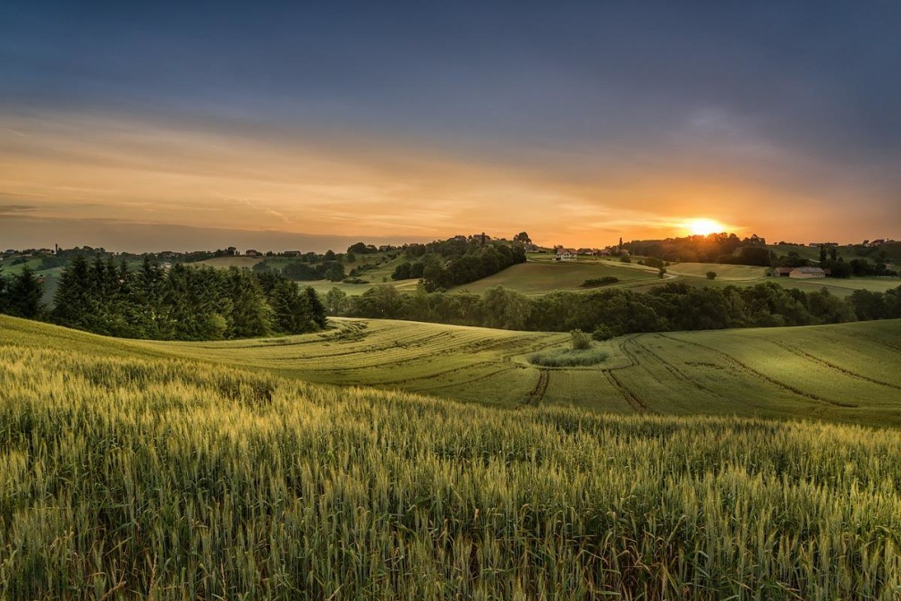 Slovene Hills rural landscape - a beautiful view of the fields near the Jurovski Dol village