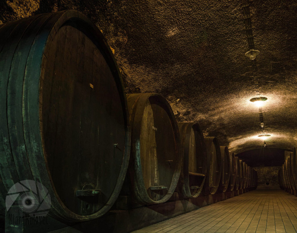 The Vinag wine cellar in Maribor, Slovenia with wooden barrels everywhere you look