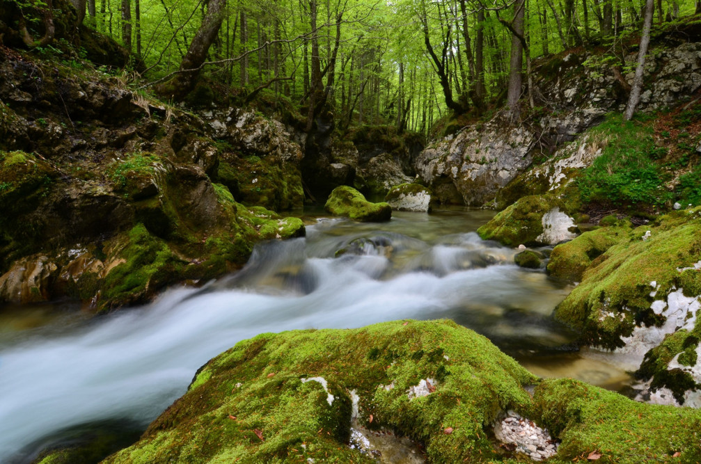 Mostnica Gorge is one of the most beautiful natural attractions in the Lake Bohinj area, Slovenia