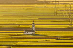 Piotr Skrzypiec photography