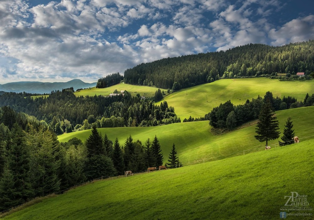 The beautiful, hilly countryside of Bojtina in the Pohorje Hills southwest of Maribor, Slovenia