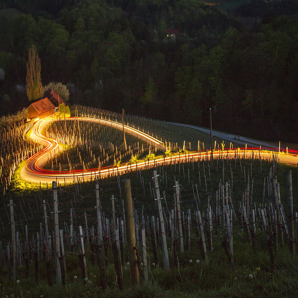 Heart-shaped road amidst the vineyards in the village of Spicnik, Slovenia