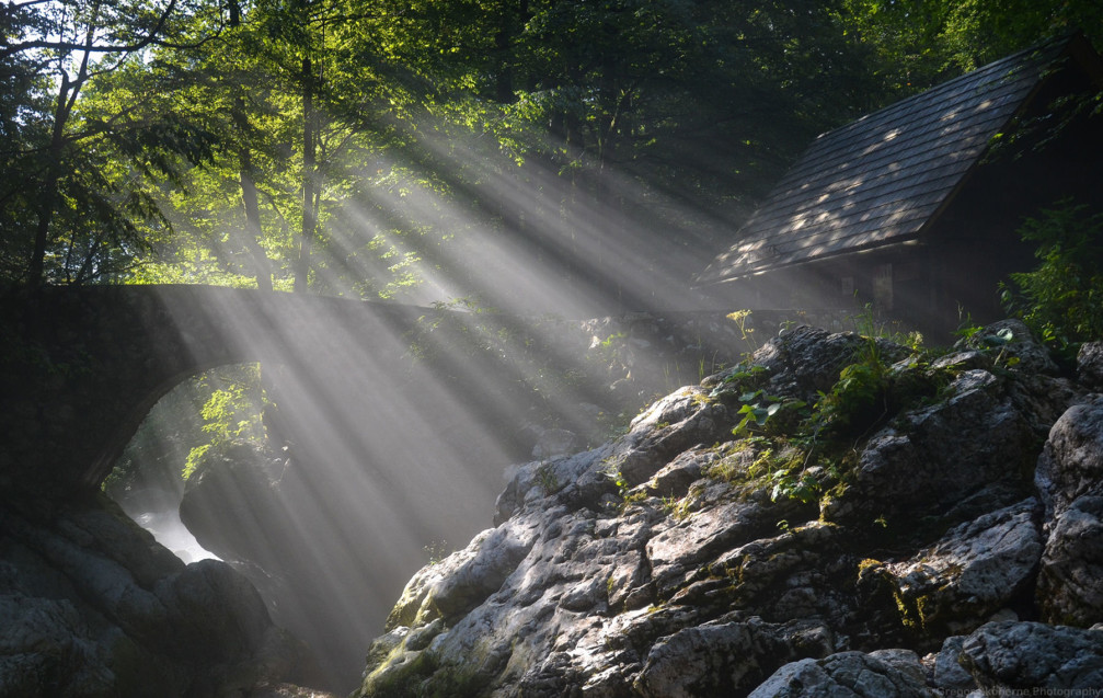 Beautifully captured sun rays filtering through the trees near the Savica waterfall