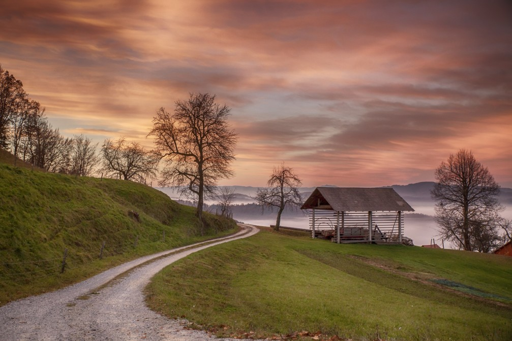 Dirt road leading to the village of Dolgo Brdo in central Slovenia