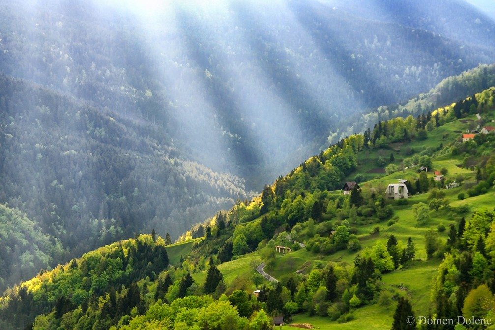 Idyllic spring landscape in Drazgose, Slovenia with fresh green trees
