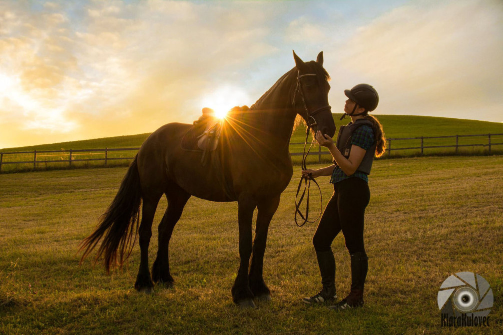 Horse riding in Slovenia