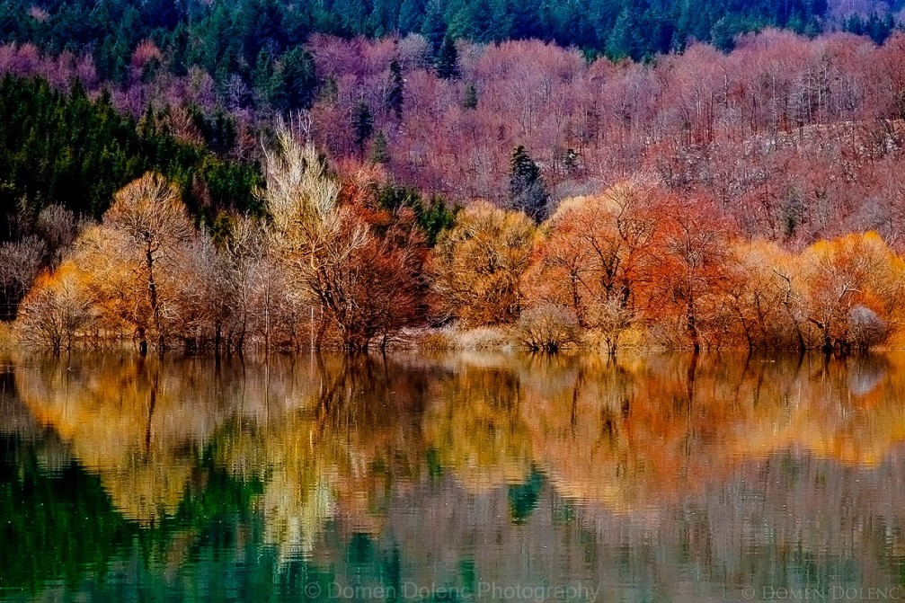 Fall foliage at the Planinsko Polje karst field in Slovenia