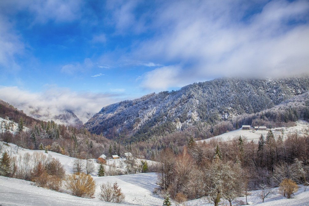 Snowy forests near the Tepe village, Slovenia