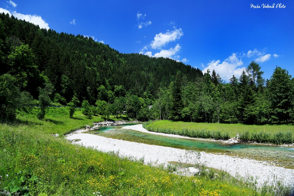 The crystal clear green waters of the Savinja river near the village of Luce, Slovenia