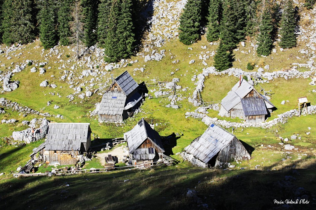 The delightful shingle-roofed wooden huts of Planina Visevnik in the Julian Alps above Bohinj, Slovenia