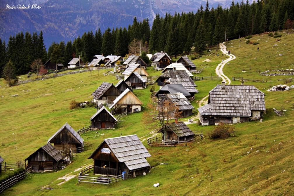 The scenic Zajamniki mountain pasture with a group of about 80 shepherds' huts on Pokljuka, Slovenia