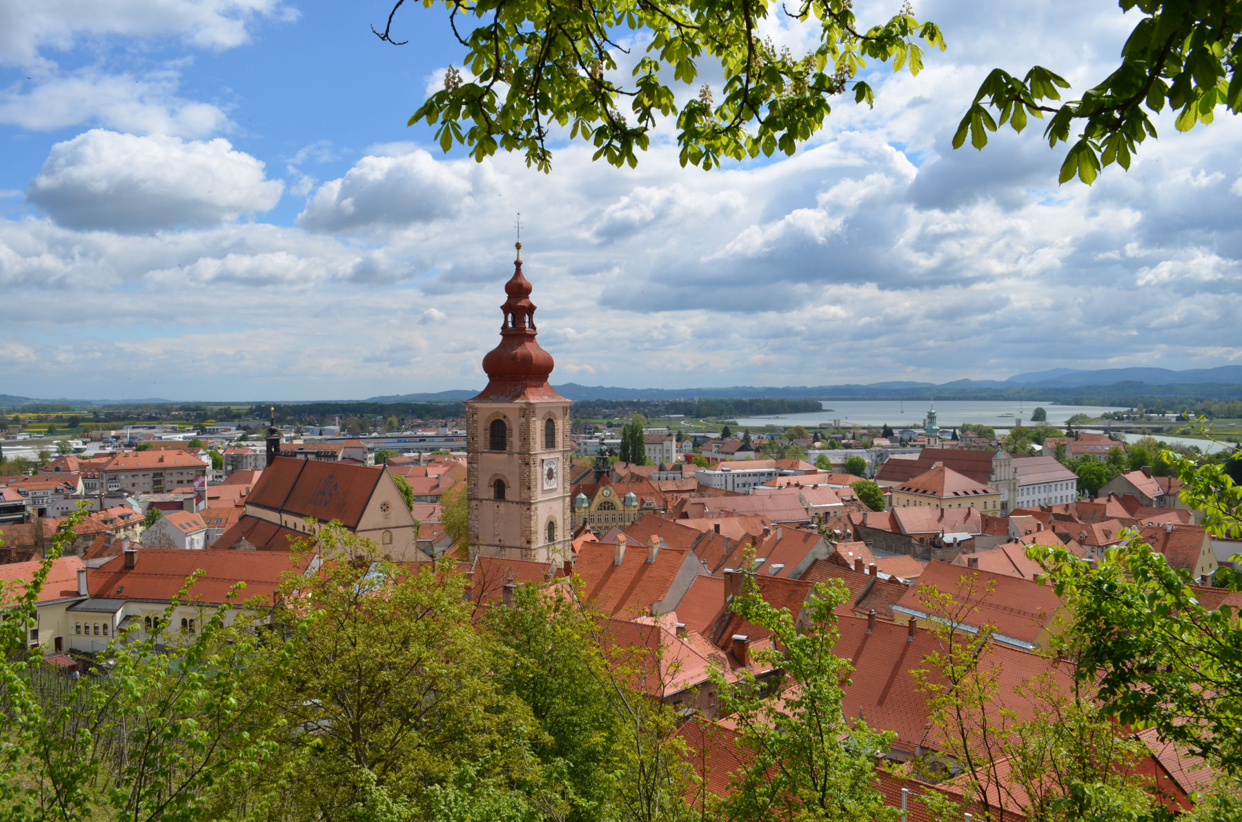 30 Beautiful Ptuj Photos That Will Inspire You To Visit