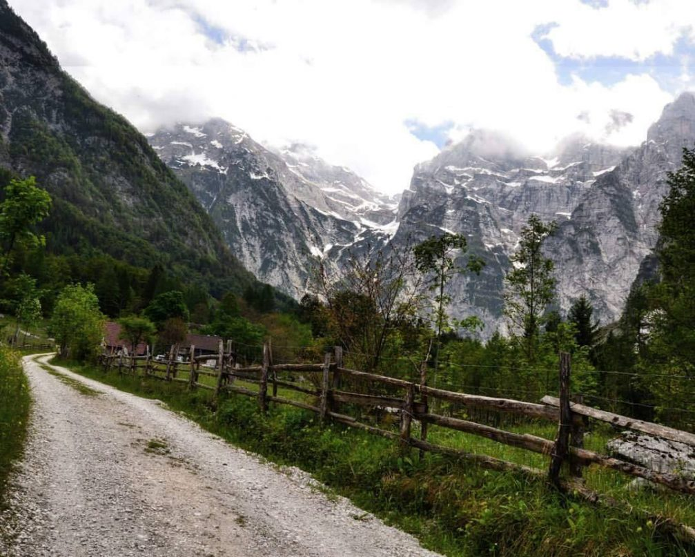 Dirt road leading through grassy countryside to mountains in the distance in the Triglav National Park