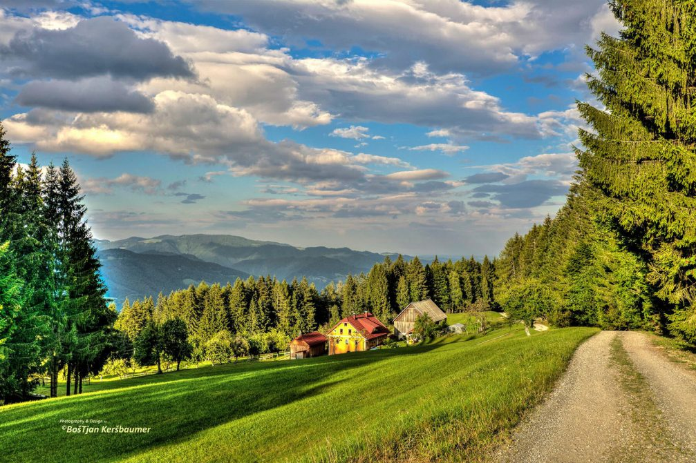 A scenic dirt road leading to the small village of Lovrenc Na Pohorju in the northeast of Slovenia