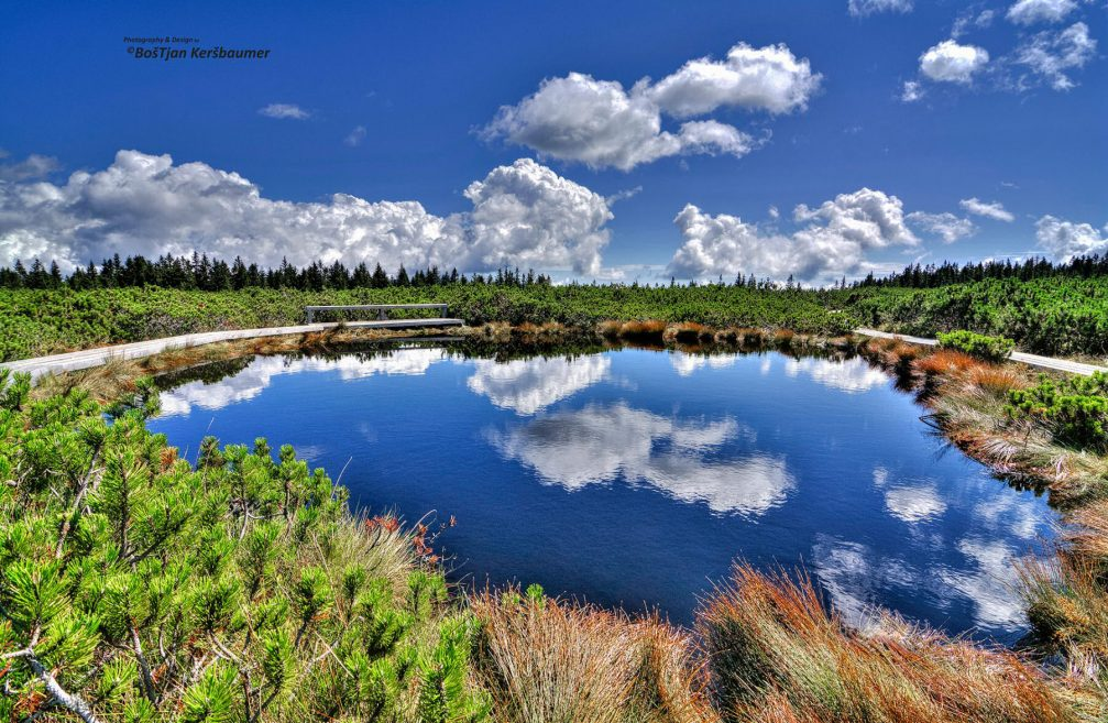 One of the beautiful small Lovrenc Marsh Lakes in the Pohorje massif in north-eastern Slovenia