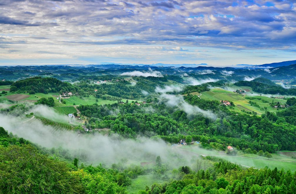An elevated view of the hilly landscape of Slovene Hills from the Placki Stolp lookout tower