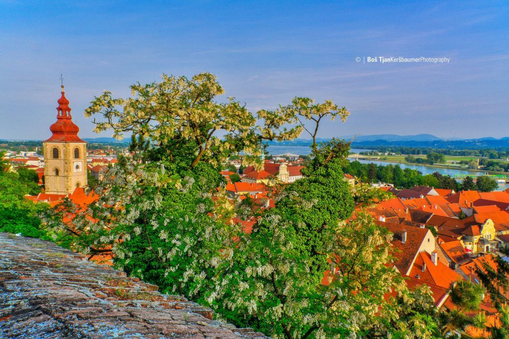 A beautiful elevated view of the town Ptuj, Slovenia