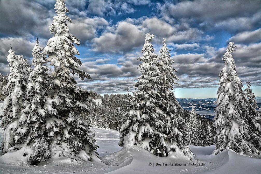 ribnisko-pohorje-winter