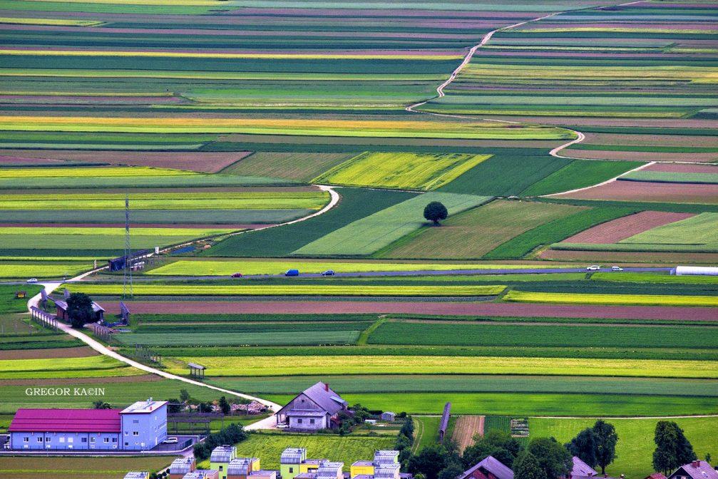Elevated view of the picturesque Sorsko Polje fields near the village of Srednje Bitnje in Slovenia