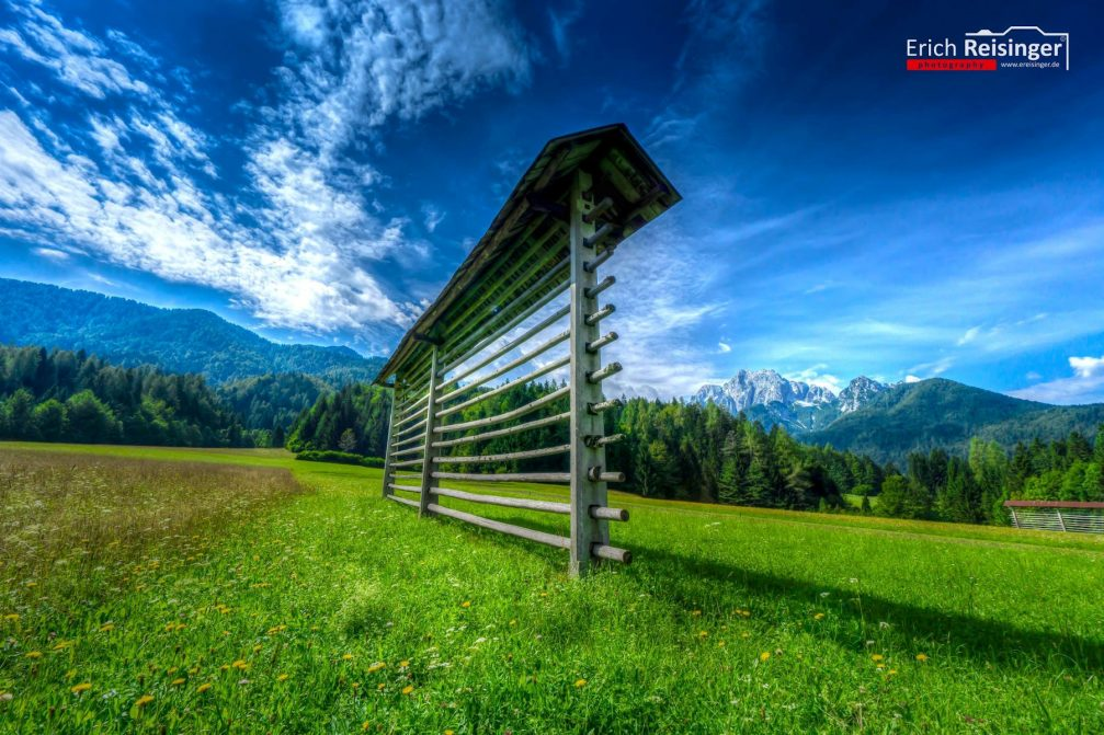 A typical simple, single kozolec or hayrack in an alpine meadow near Kranjska Gora, Slovenia