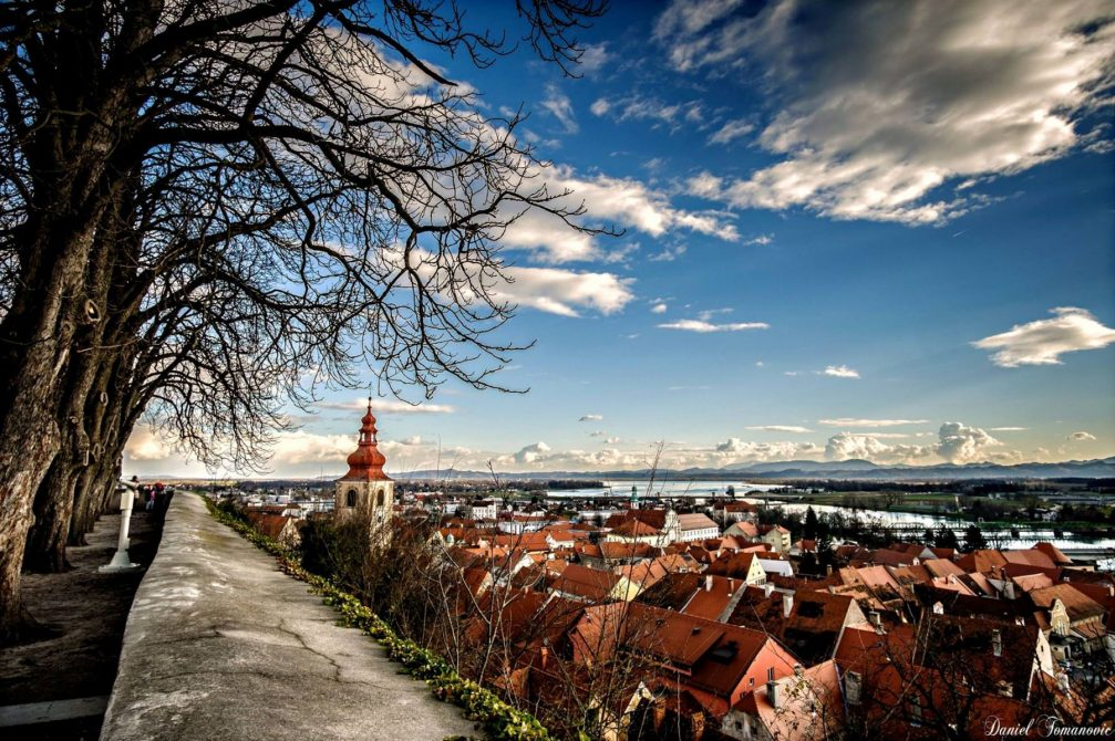 Elevated view of red-roofed houses in the town of Ptuj, Slovenia