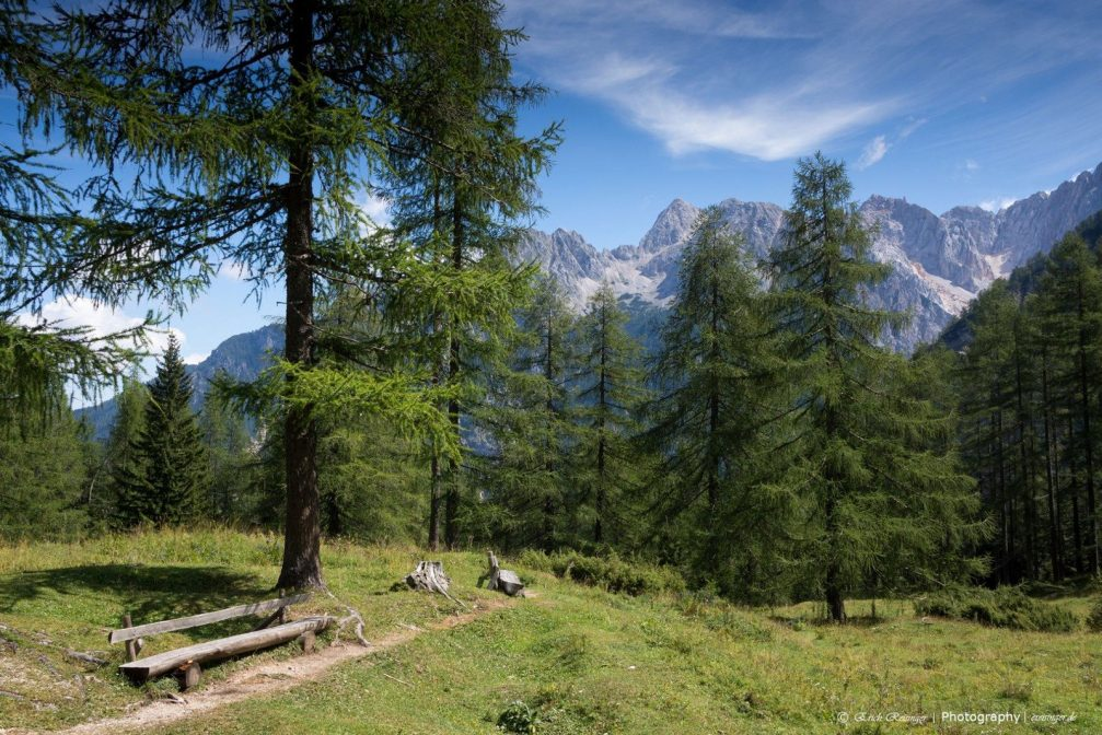 The beautiful green nature near Vrsic in the Julian Alps, Triglav National Park, Slovenia