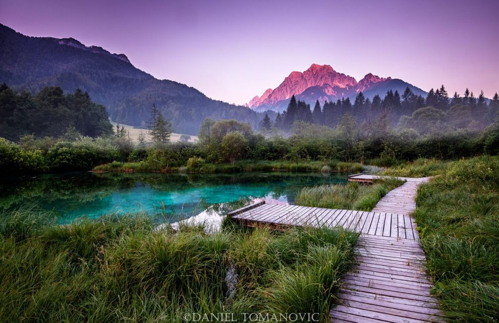 Lake Zelenci, part of the Zelenci Nature Reserve in northwestern Slovenia, with an observation trail