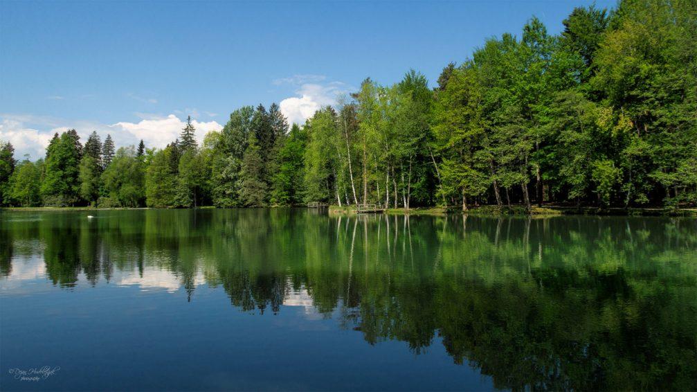 View of the Lake in the Brdo Park near Kranj, Slovenia