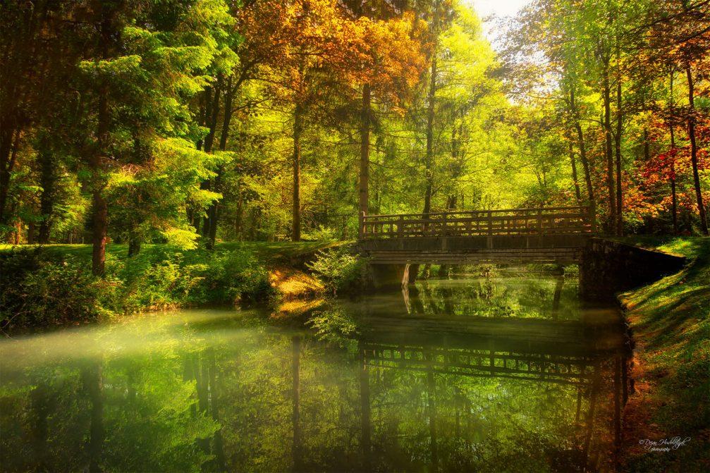 Park Brdo near Kranj, Slovenia in colorful autumn colors