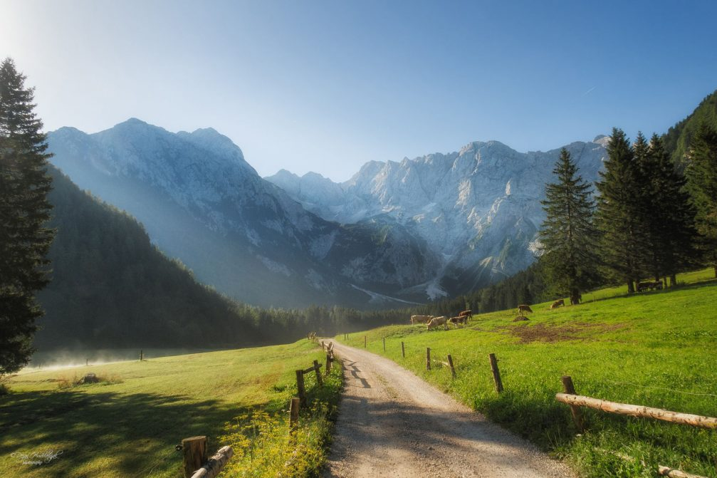 A dirt road leading through the Ravenska Kocna valley in Zgornje Jezersko, Slovenia