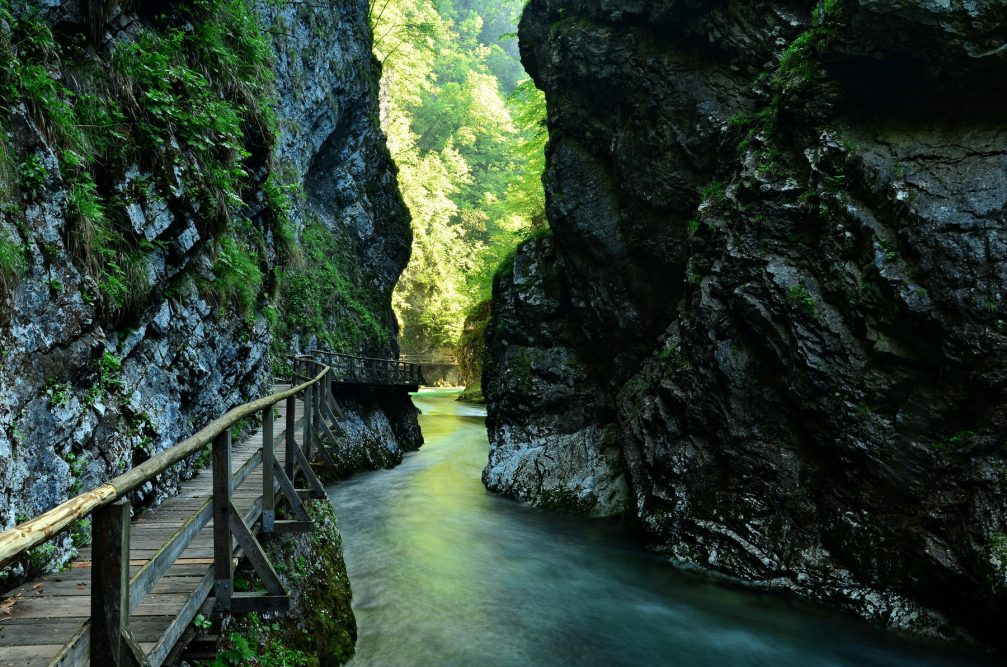 Crystal clear Radovna River flowing through the canyon walls of the Vintgar Gorge in Bled, Slovenia